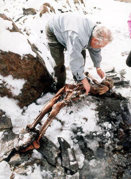 Mummia uomo del Similaun sulle Alpi italiane 1991